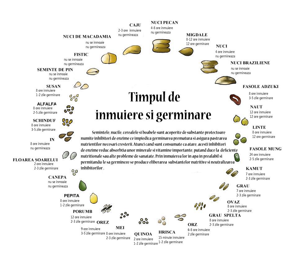 nucile-si-semintele