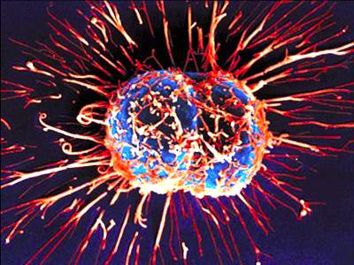 Cancer-Cells-HD-Photos-Collection3